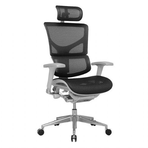 Ergo-Dynamic Mesh Office Chair Grey Frame With Headrest
